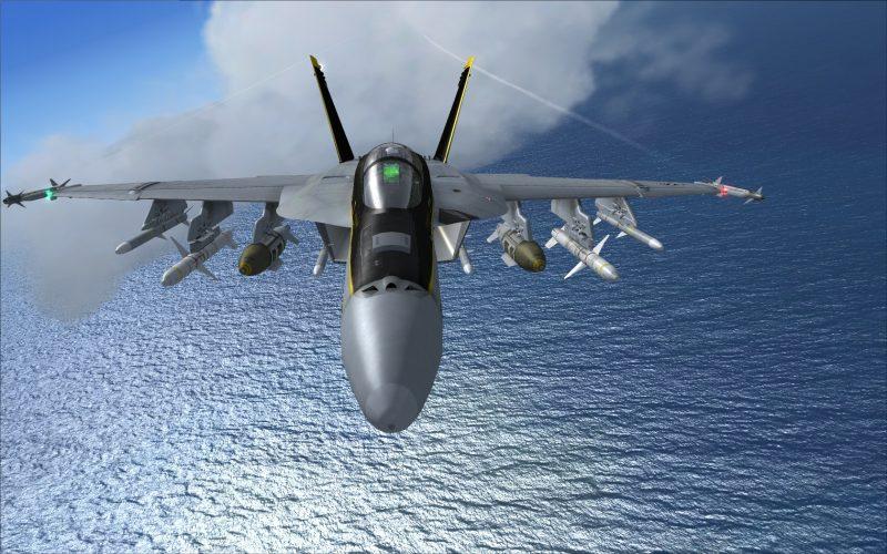 VRS F/A-18E スーパーホーネット(Super Bug)正面から